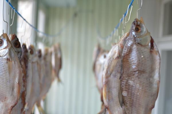 Вялим рыбу