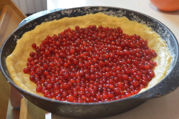 Выкладываем ягоды на тесто